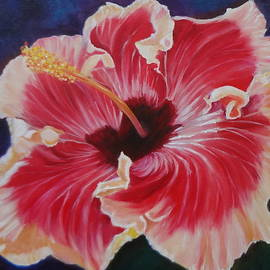 Hibiscus by Jenny Lee