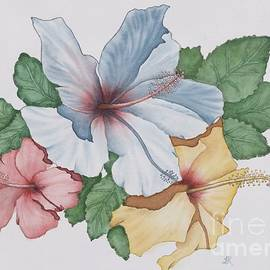 Hibiscus, Joy of Hawaii and California by TK Alexander