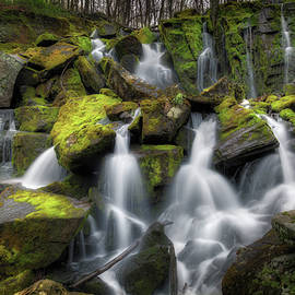 Bill Wakeley - Hidden Mossy Falls