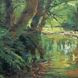 HIdden Stream by Steve Henderson