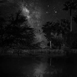 Hidden World by Mark Andrew Thomas