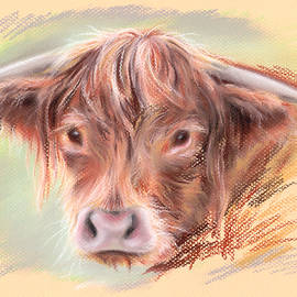 MM Anderson - Highland Cow Pastel