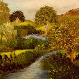 Hiiden Creek by Sandra Young Servis