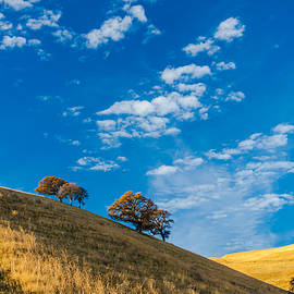 Marc Crumpler - hiking east bay hills