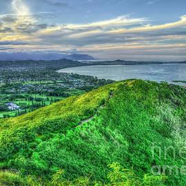 Reid Callaway - Hiking The Ridge Kailua Lanikai Pillboxes Hike Hawaii Collection Art
