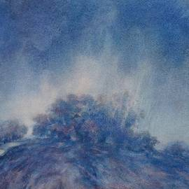 Virgil Carter - Hill Country Storm, No 2