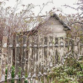 Lexa Harpell - Hill End in Winter