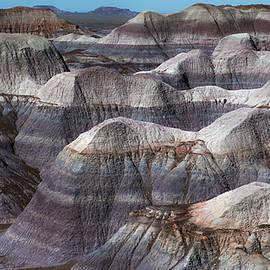 Joseph Smith - Hills of Blue Mesa