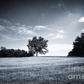 Jan Brons - Hilly Black White Landscape