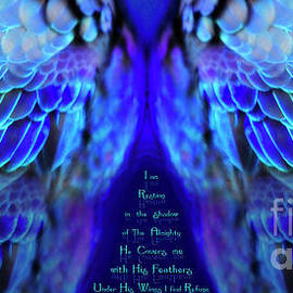 Psalm 91 Wings 2 by Constance Woods