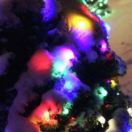 Holiday Lights-4303