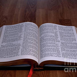 Liz Masoner - Holy Bible on Wood