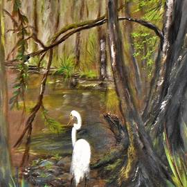 Home Swamp Home by Jacqueline Whitcomb