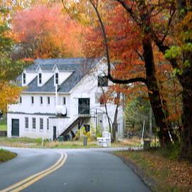 Arlane Crump - HOMETOWN Series - Autumn Road