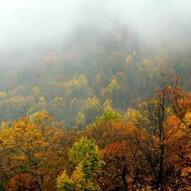Arlane Crump - HOMETOWN Series - Foggy Autumn Scene