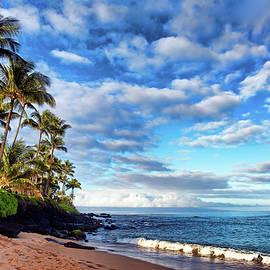 Honokowai Palms by Marcia Colelli