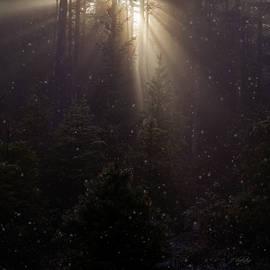 Jordan Blackstone - Hope and Faith - Winter Art