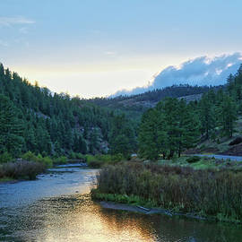 Lorraine Baum - Horse Creek
