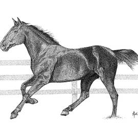 Mike Oliver - Horse Drawing Pointallism