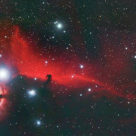 Horse Head And Flame Nebula by Dale J Martin