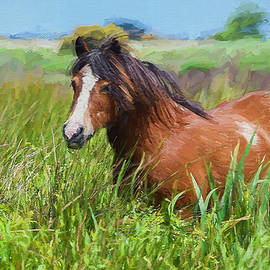 Ericamaxine Price - Horse in the Marsh - Painting