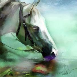Horse Andalusian by Mark Tonelli