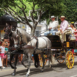 Horses and carriage by Digby Merry