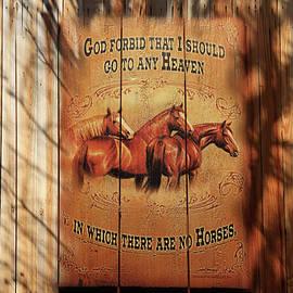 Donna Kennedy - Horses