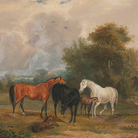 Horses Grazing - Mares and Foals in a Field - Francis Calcraft Turner