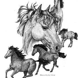 Sherry Shipley - Horses