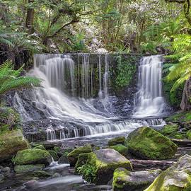 Tony Crehan - Horseshoe Falls - Southern Tasmania - Australia