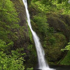 Horsetail Falls by Harold Rau