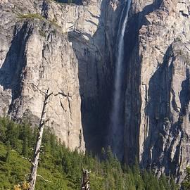 Michael Courtney - Horsetail Falls