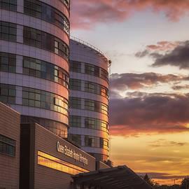 Chris Fletcher - Hospital Sunset