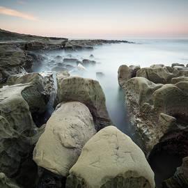 William Dunigan - Hospitals Reef Crevices