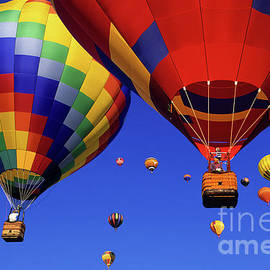 Bob Christopher - Hot Air Balloons Albuquerque
