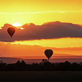 Hot Air Balloons in Surise Orange Africa Sky - Susan Schmitz