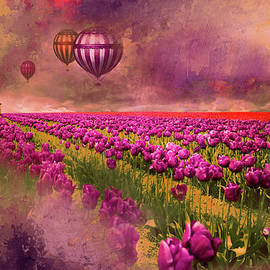 Hot Air Balloons over Tulip Fields by Jeff Burgess