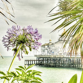 Connie Handscomb - Hot Eastbourne Summer