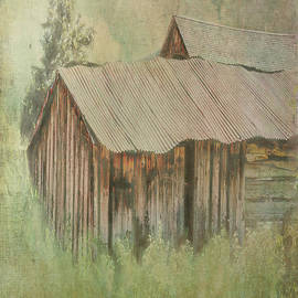 Hot Tin Roof by Ramona Murdock