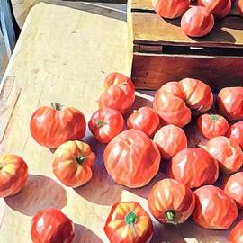 Hot Tomatoes - A Sunny Day on the Farm by Miriam Danar