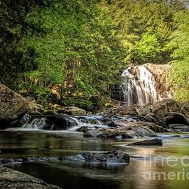 Jan Mulherin - Houston Brook Falls - Summer