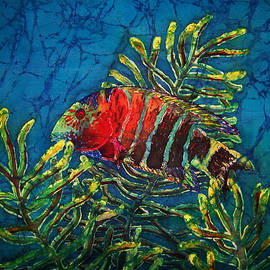 Hovering - Red Banded Wrasse by Sue Duda