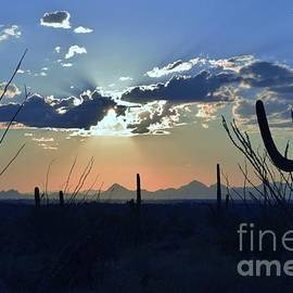 How Blue Is My Valley by Janet Marie