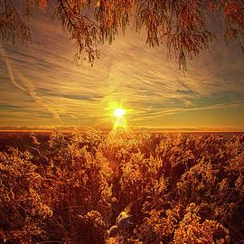 Phil Koch - How, In Such Forgetting, Do We Become