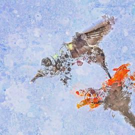 Geraldine Scull - Humming bird wall art