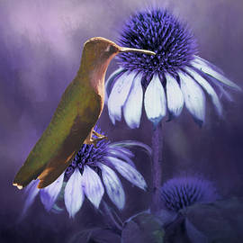 Ericamaxine Price - Hummingbird on the Cone Flower - Painting