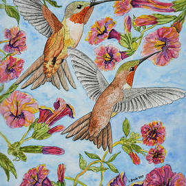 Linda Brody - Hummingbirds and Hibiscus II