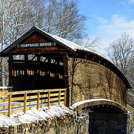 Michael Scott - Humpback Bridge