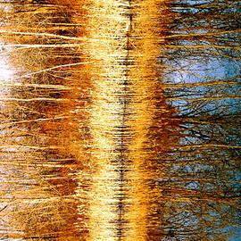 Daniel Thompson - Huron Reflections